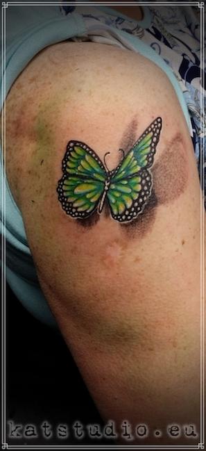 motyl zielony