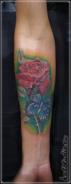 motyl róza